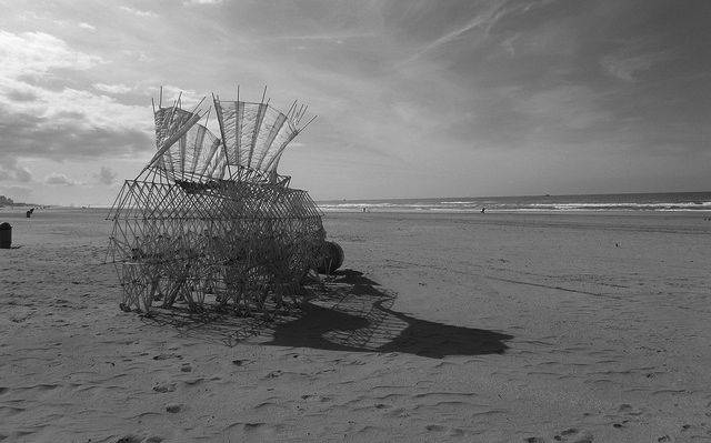 A Strandbeest in its natural habitat, on the Dutch shore
